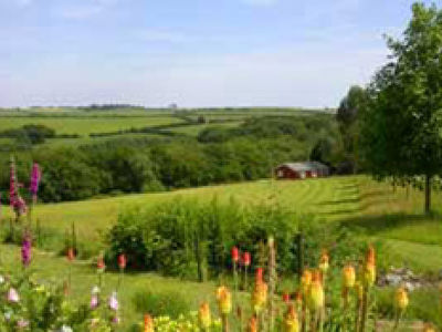 Picture of Cutkive Wood Holiday Lodges, Cornwall