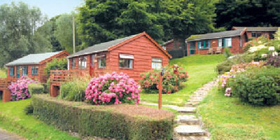 Picture of Grattons Cedar Lodges, Devon