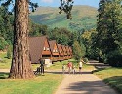 Picture of Lochgoilhead Lodges, Argyll & Bute