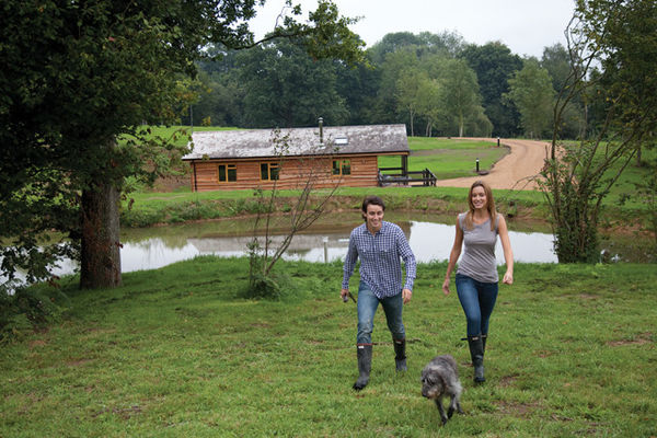New Forest Lodges pet friendly