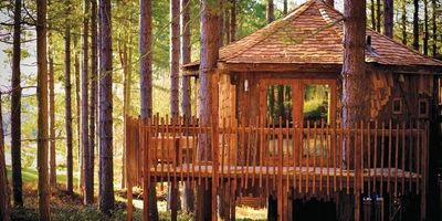 Sherwood Forest Lodges 1