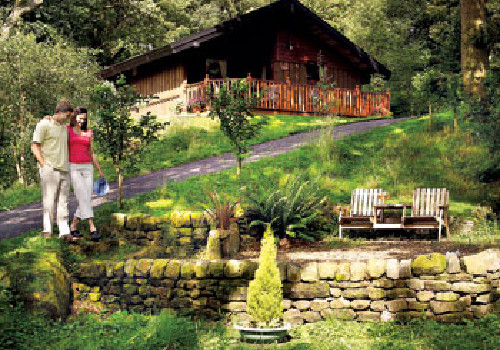 Spring wood lodges holiday lodge park in north yorkshire for Log cabins for sale north yorkshire