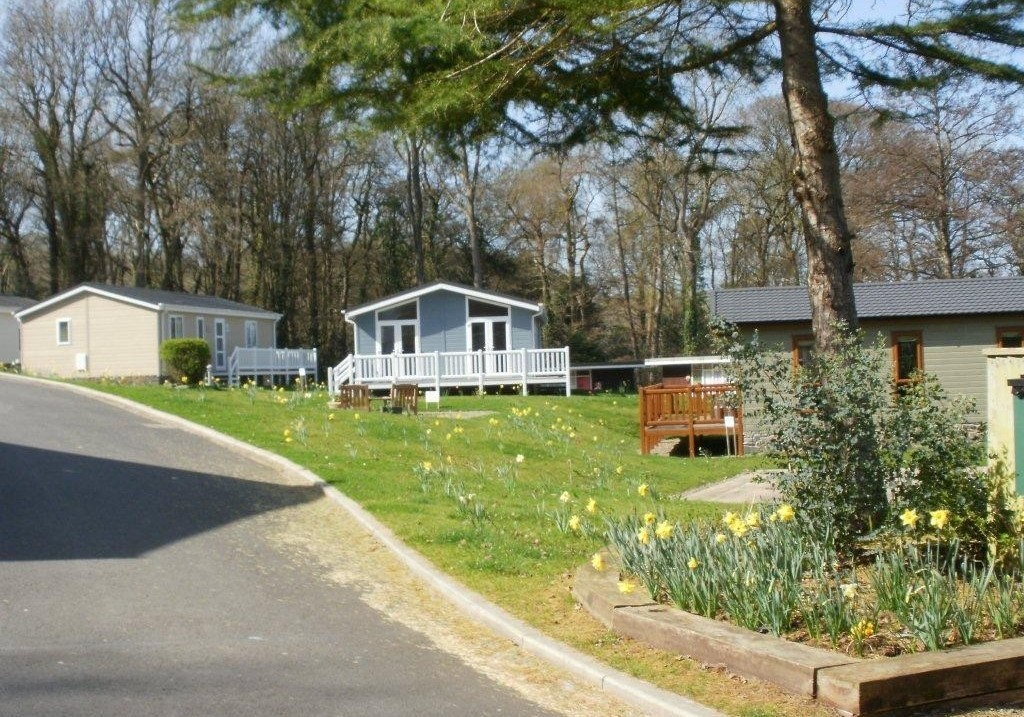 Woodlands new quay holiday lodge park in ceredigion for Piani di log cabin lodge
